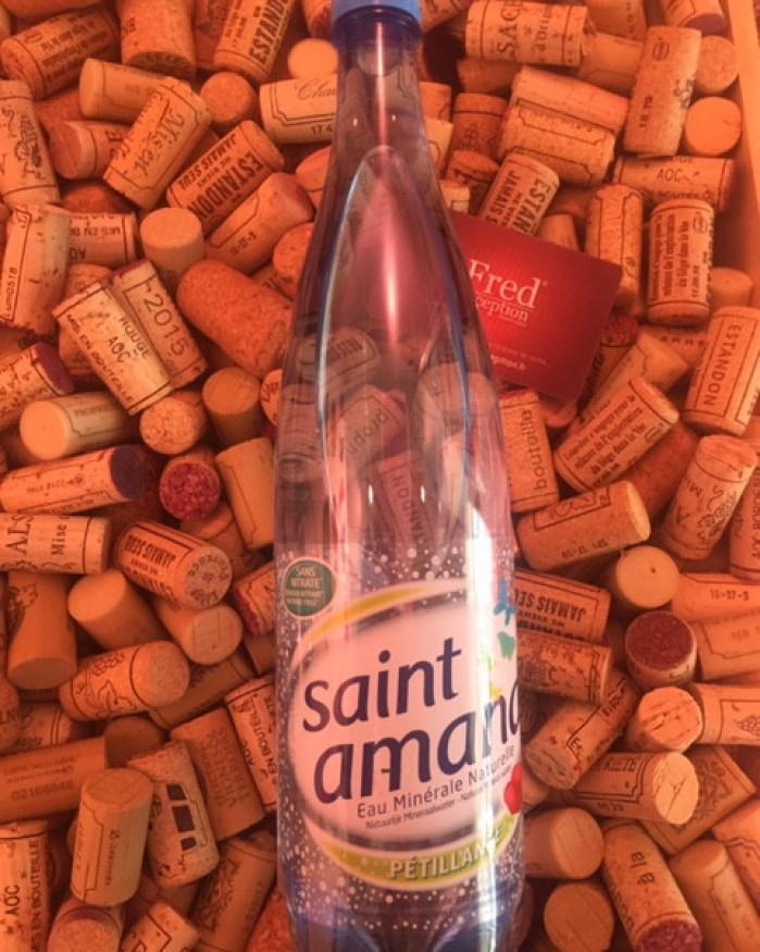 Eau gazeuse Saint Amand 1L